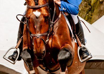 fredtigelaar_sport_paardensport_jaarboek_work-006