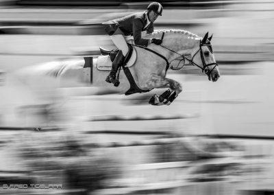 fredtigelaar_sport_paardensport_jaarboek_work-010